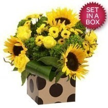 Bright Yellow Arrangement