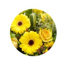 Yellow Rose And Gerbera Posy