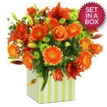 Mixed Orange Arrangement