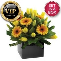VIP Yellow Arrangement
