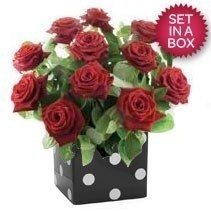36 Red Roses Arrangement