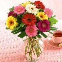 Bright Mixed Gerbera Bunch