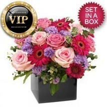 VIP Roses And Gerberas Arrangement