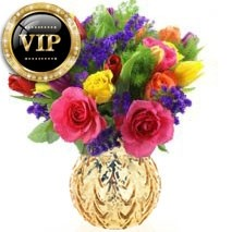 VIP Bright Bunch