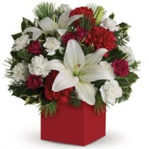 Christmas Carols Flowers