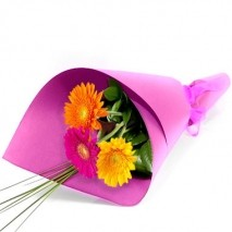 3 Wrapped Gerberas