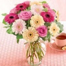 Pastel Gerbera Bunch