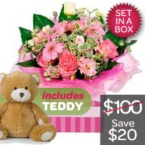 New Baby Girl Arrangement + Teddy