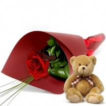 Single Wrapped Rose With Teddy